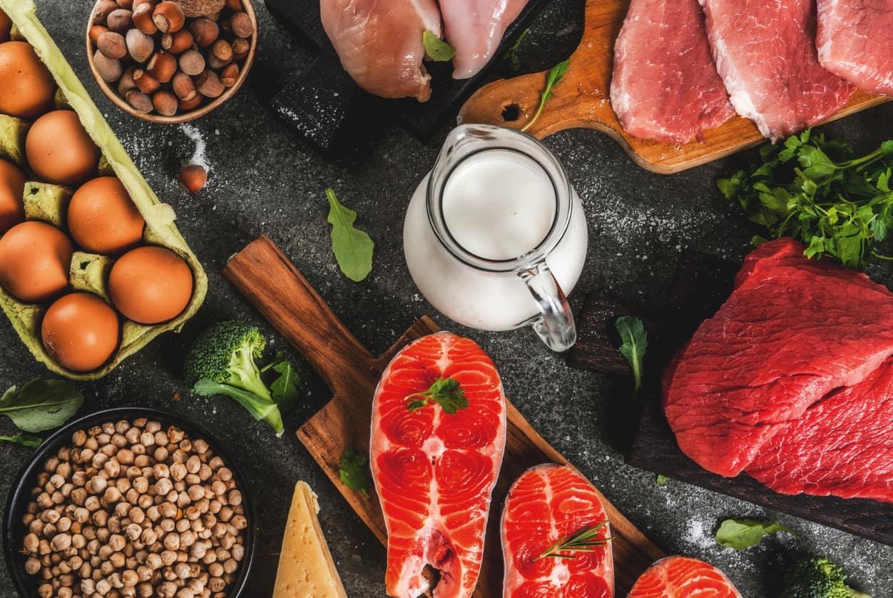 Berbicara Mengenai Protein Dan Manfaatnya Untuk Tubuh